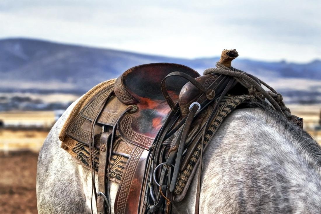 saddle-419745_1920